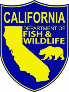 California-Department-of-Fish-and-Wildlife-300x395