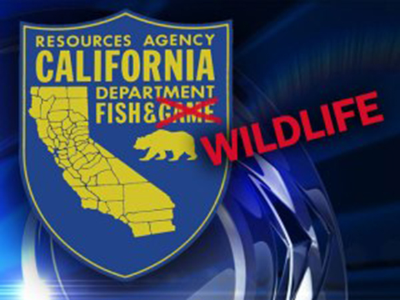 California department of fish and game regional offices for Department of fish and game